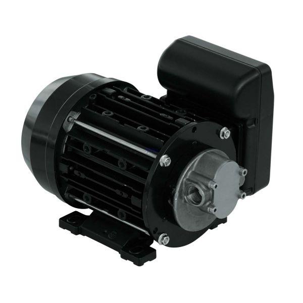PIUSI Garda AC 230V Transferpumpe/Zahnradpumpe 10L/Min für Wasser, Diesel, Öl